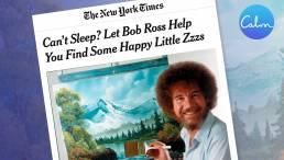 Bob Ross - Calm